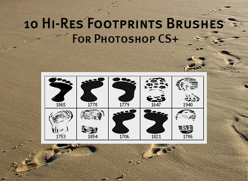 Footprints Brushes